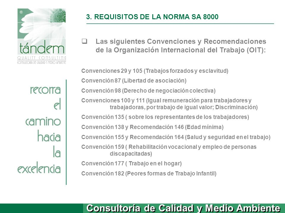 3. REQUISITOS DE LA NORMA SA 8000