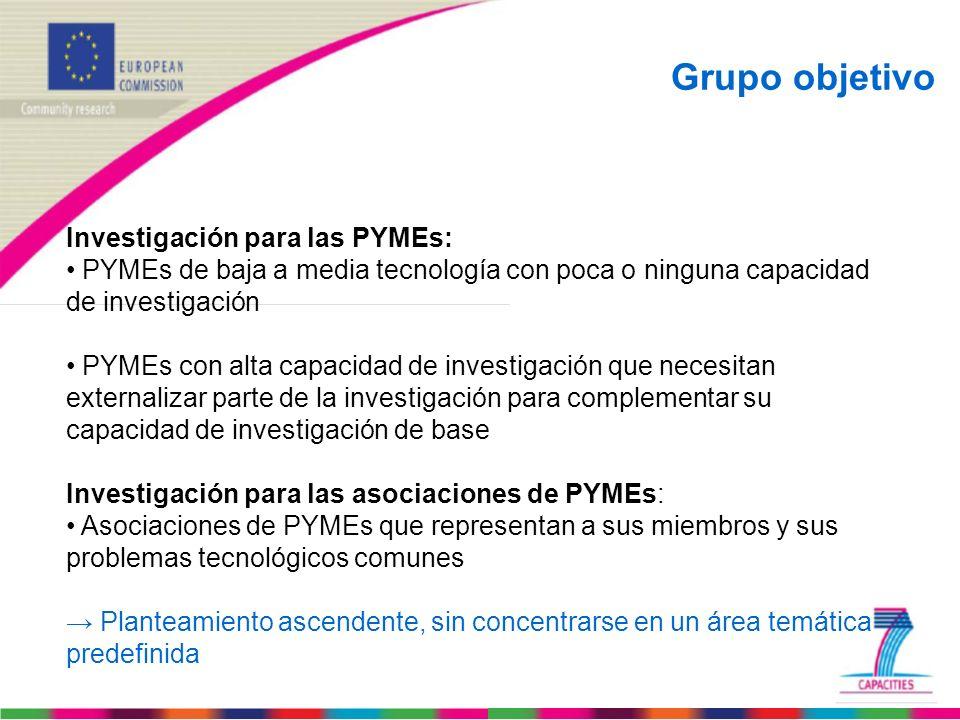 Grupo objetivo Investigación para las PYMEs:
