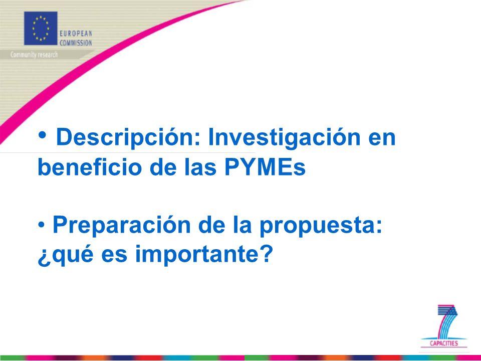 Descripción: Investigación en beneficio de las PYMEs • Preparación de la propuesta: ¿qué es importante