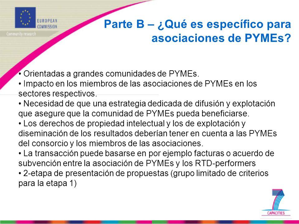 Parte B – ¿Qué es específico para asociaciones de PYMEs