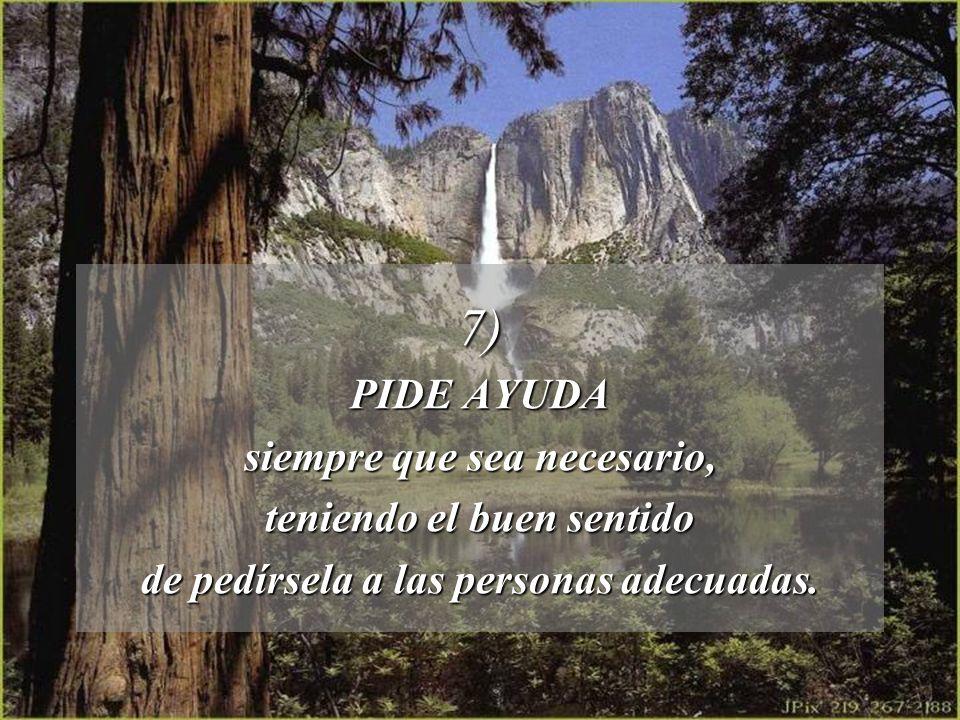 7) PIDE AYUDA siempre que sea necesario, teniendo el buen sentido
