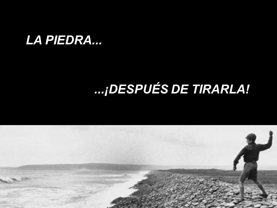 LA PIEDRA... ...¡DESPUÉS DE TIRARLA!