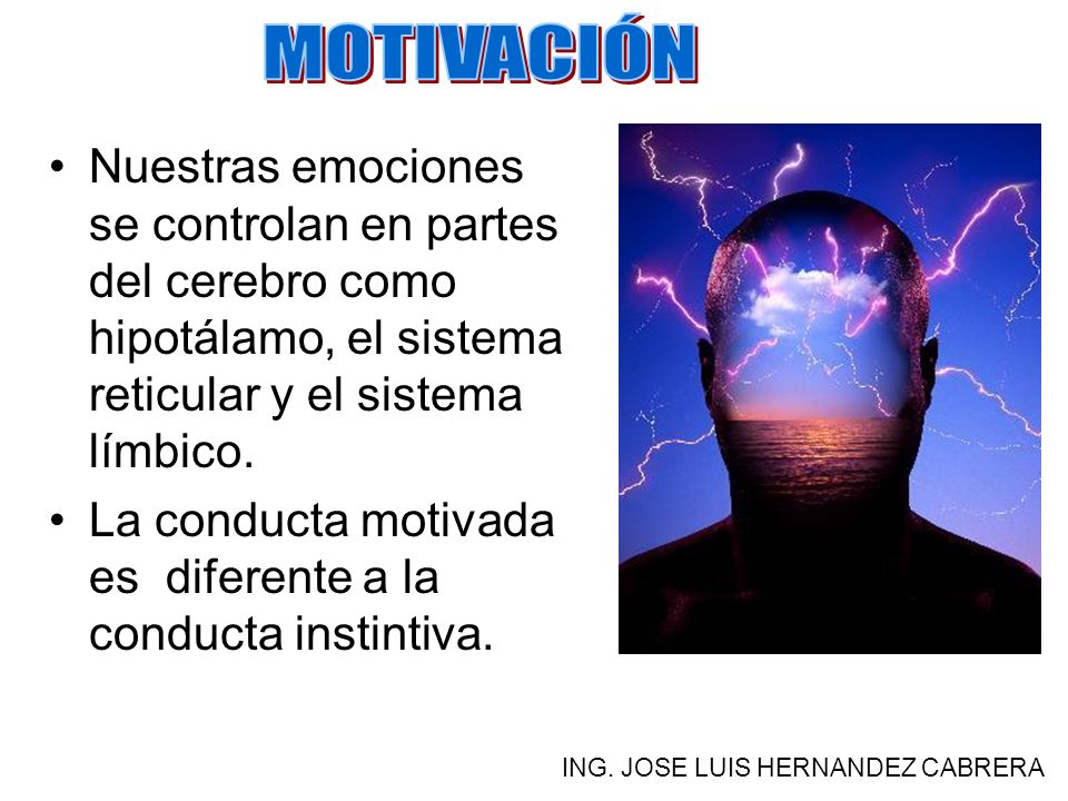 MOTIVACIÓN Nuestras emociones se controlan en partes del cerebro como hipotálamo, el sistema reticular y el sistema límbico.
