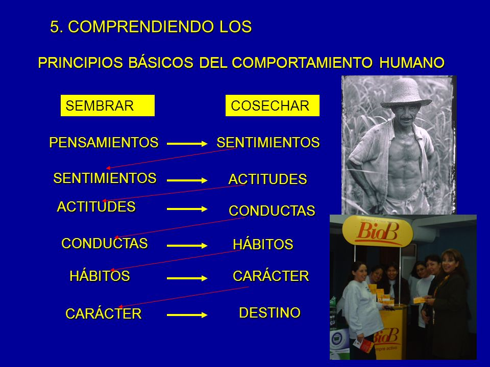 5. COMPRENDIENDO LOS PRINCIPIOS BÁSICOS DEL COMPORTAMIENTO HUMANO