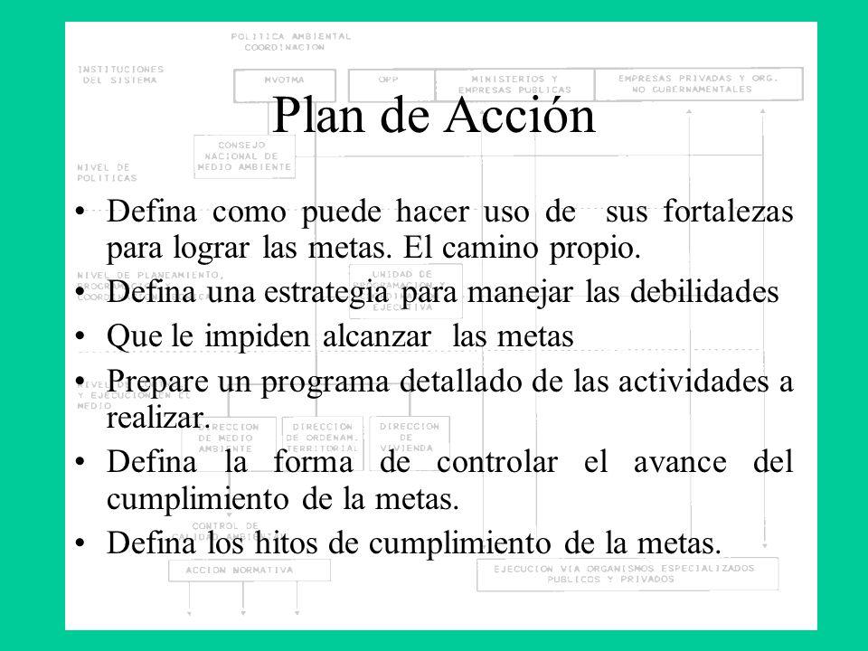 Plan de AcciónDefina como puede hacer uso de sus fortalezas para lograr las metas. El camino propio.