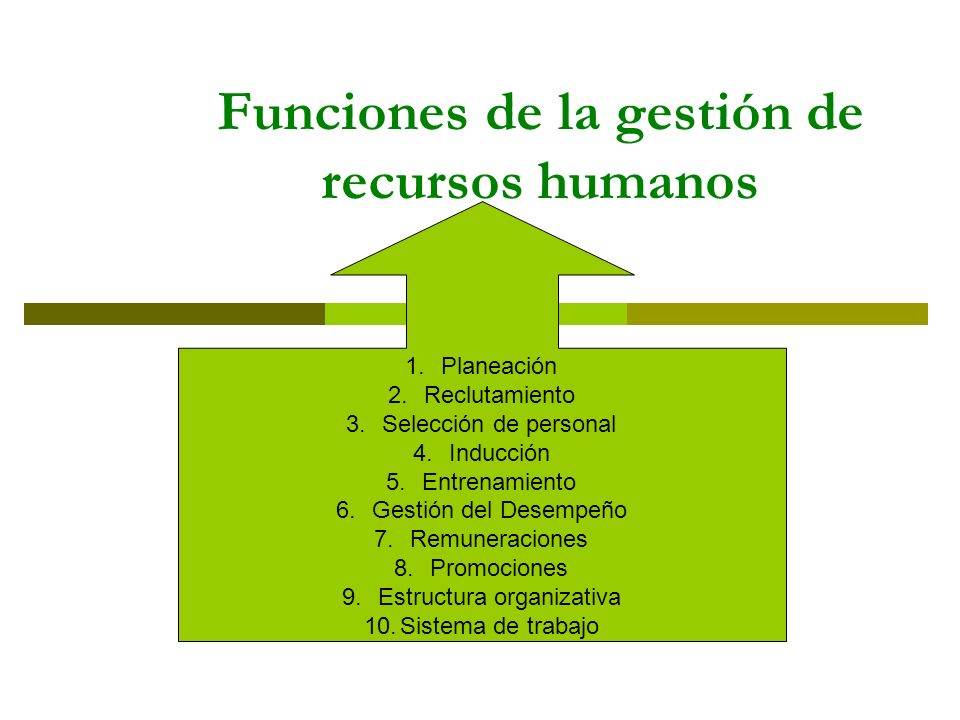 Funciones de la gestión de recursos humanos