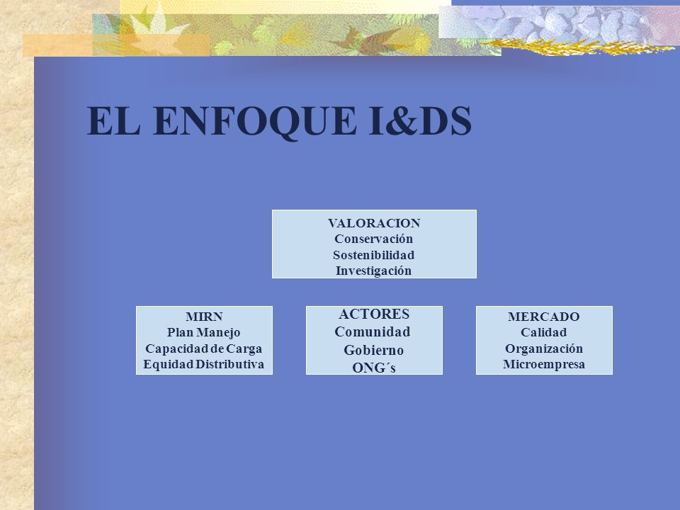 EL ENFOQUE I&DS ACTORES Comunidad Gobierno ONG´s VALORACION
