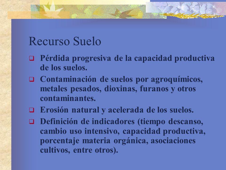 Recurso Suelo Pérdida progresiva de la capacidad productiva de los suelos.