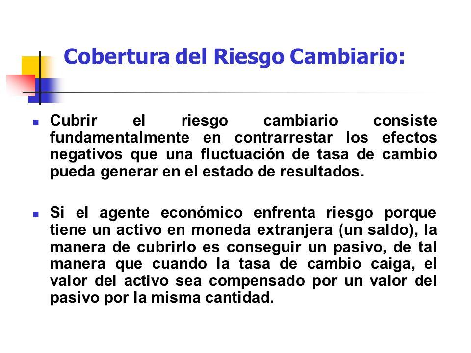 Cobertura del Riesgo Cambiario: