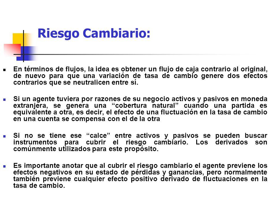 Riesgo Cambiario: