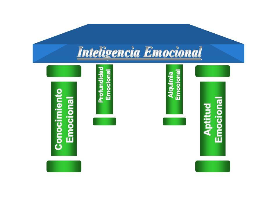 Inteligencia Emocional Profundidad Emocional Conocimiento Emocional