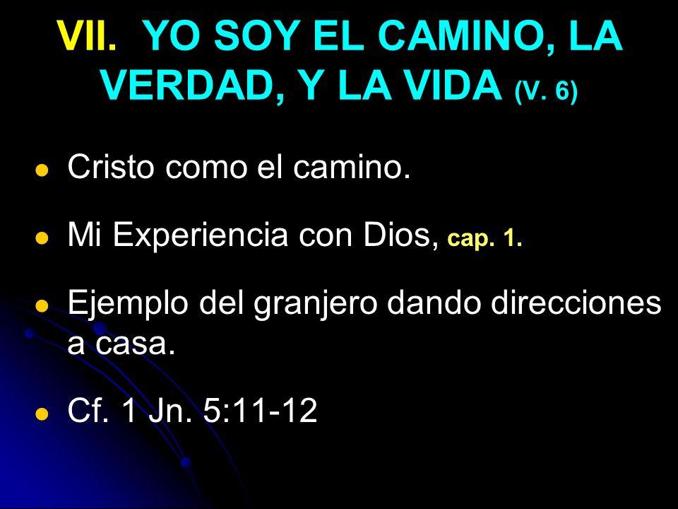 VII. YO SOY EL CAMINO, LA VERDAD, Y LA VIDA (V. 6)