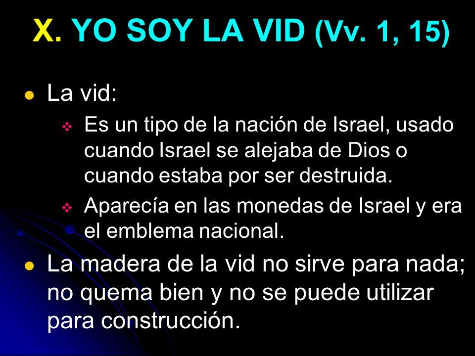 X. YO SOY LA VID (Vv. 1, 15) La vid:
