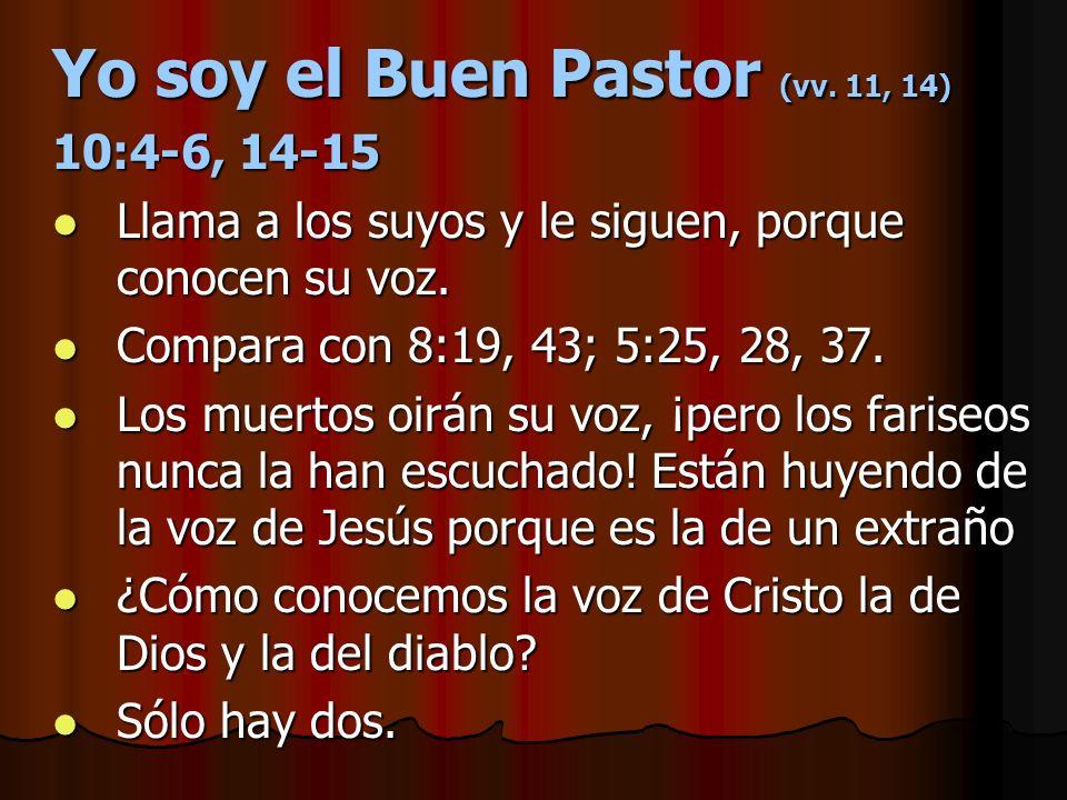 Yo soy el Buen Pastor (vv. 11, 14)