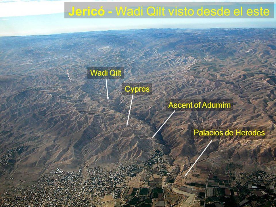 Jericó - Wadi Qilt visto desde el este