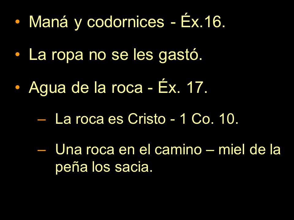Maná y codornices - Éx.16. La ropa no se les gastó.