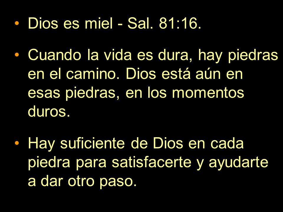 Dios es miel - Sal. 81:16. Cuando la vida es dura, hay piedras en el camino. Dios está aún en esas piedras, en los momentos duros.