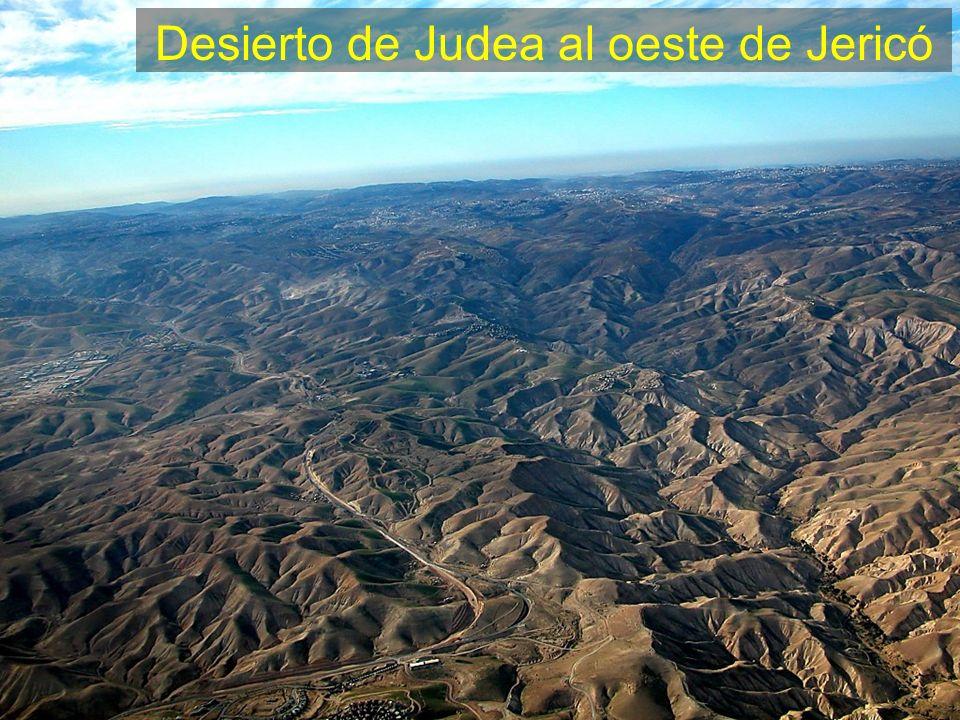 Judean Wilderness west of Jericho aerial
