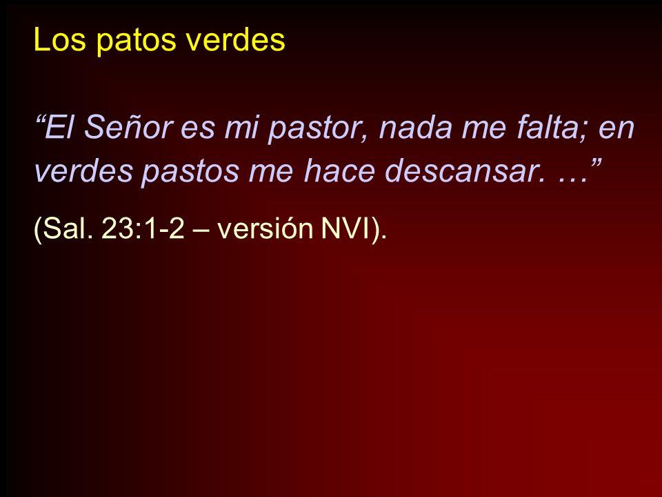 El Señor es mi pastor, nada me falta; en