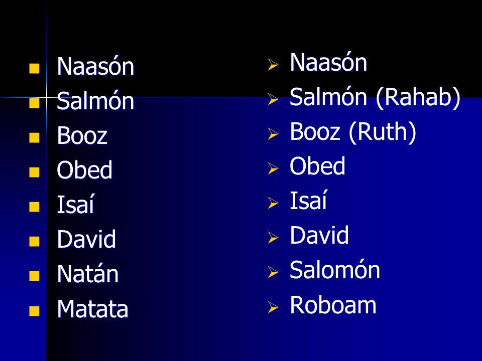 Naasón Salmón (Rahab) Booz (Ruth) Obed. Isaí. David. Salomón. Roboam. Naasón. Salmón. Booz.
