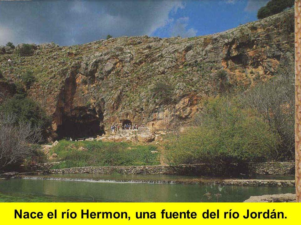 Nace el río Hermon, una fuente del río Jordán.