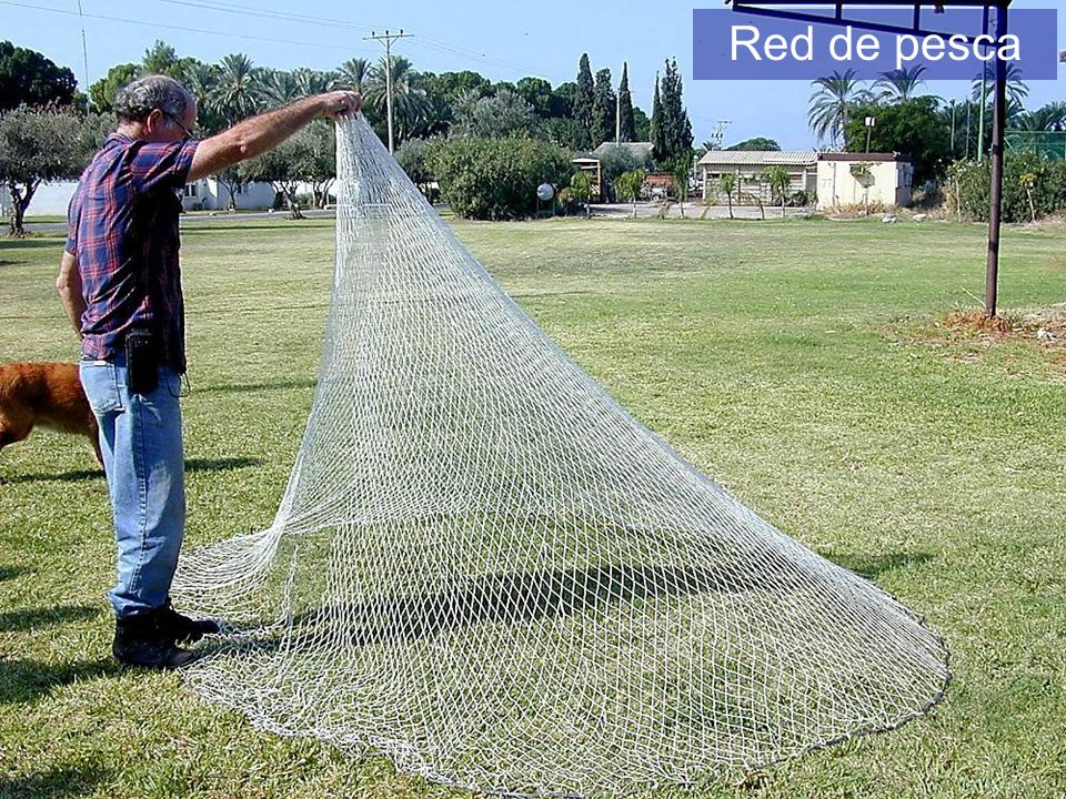 Red de pesca Cast net The Cast Net