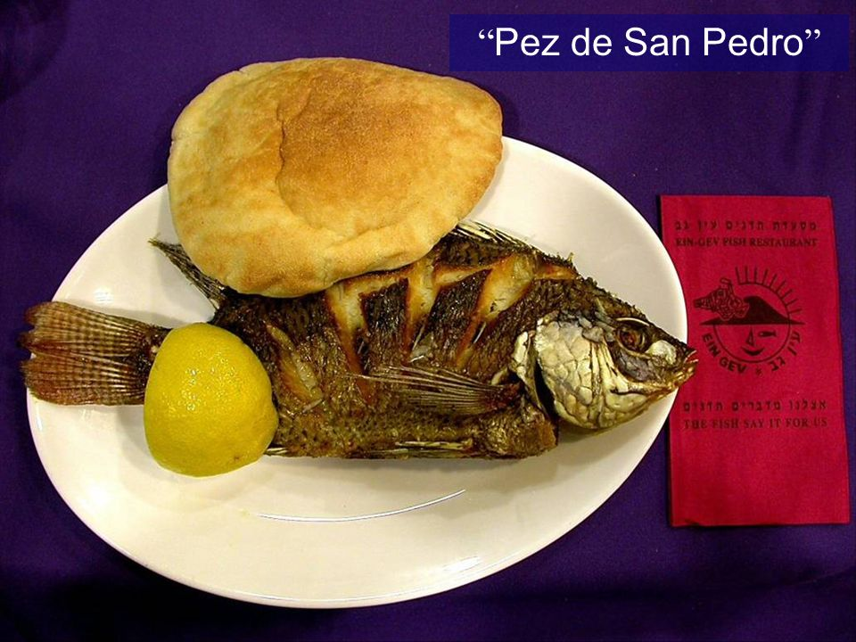 Pez de San Pedro St Peter s fish Fish in the Sea of Galilee
