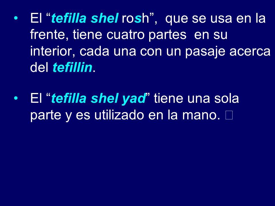 El tefilla shel rosh , que se usa en la frente, tiene cuatro partes en su interior, cada una con un pasaje acerca del tefillin.