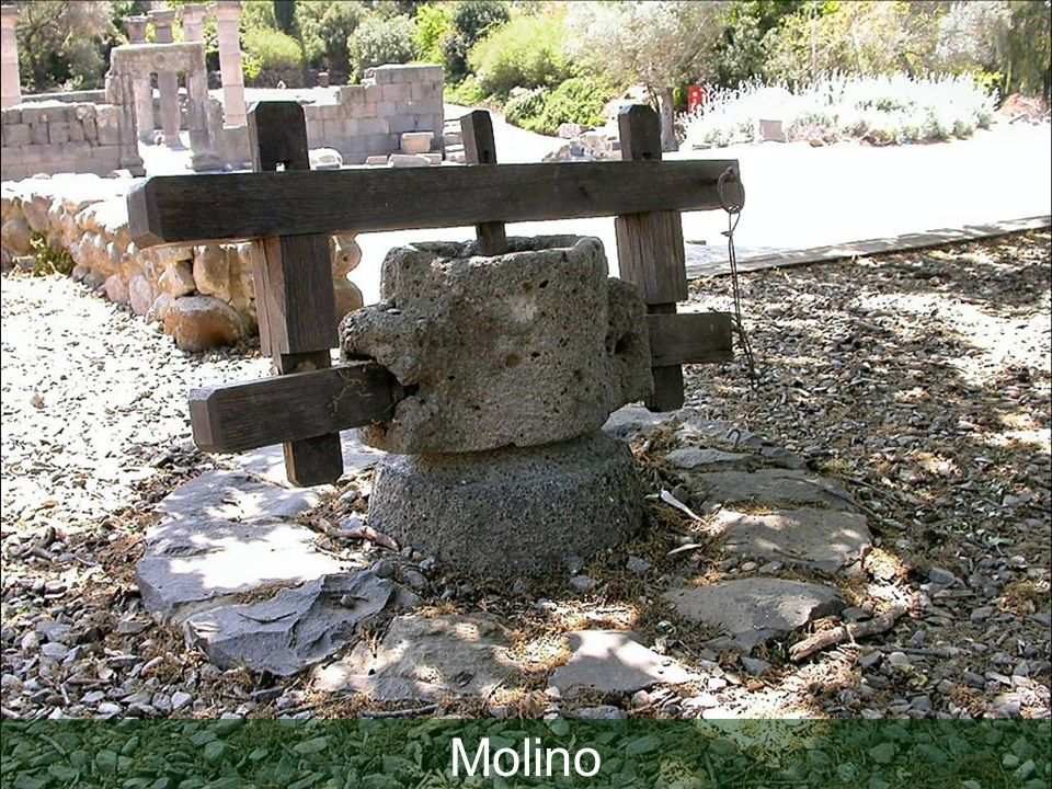 Basalt millstone at Qatzrin
