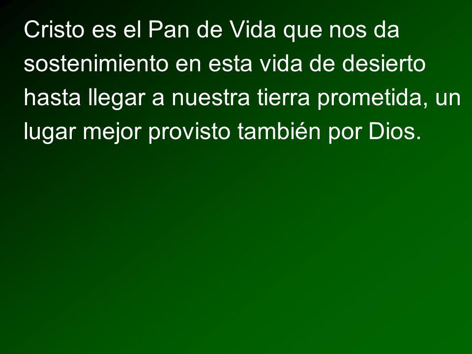 Cristo es el Pan de Vida que nos da