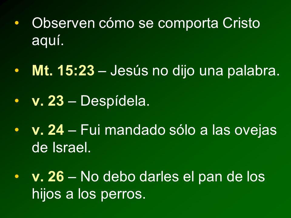 Observen cómo se comporta Cristo aquí.