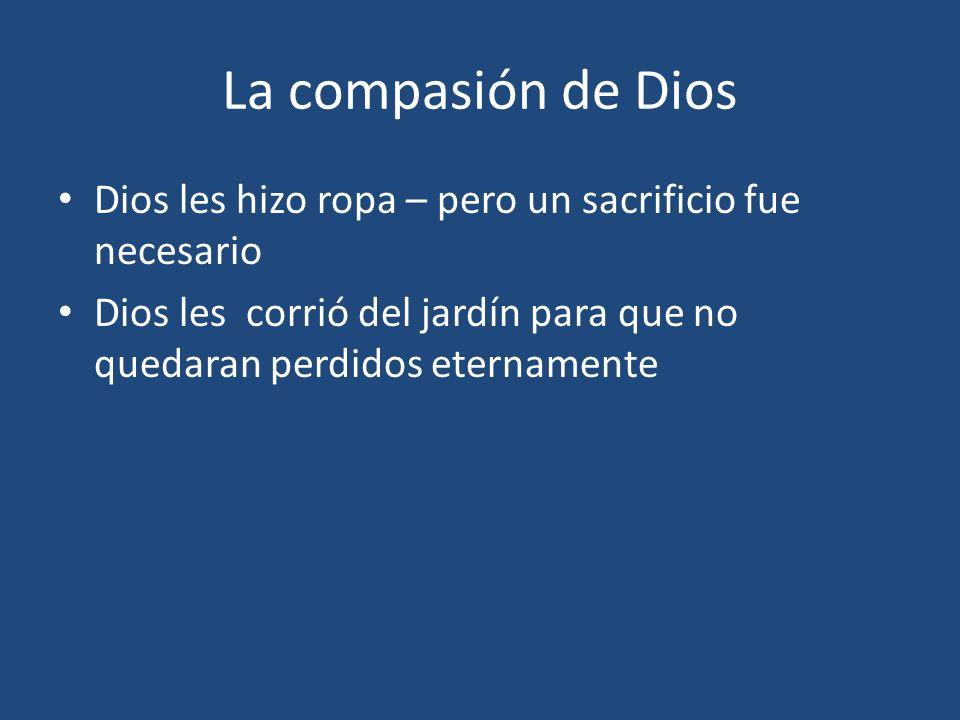 La compasión de Dios Dios les hizo ropa – pero un sacrificio fue necesario.