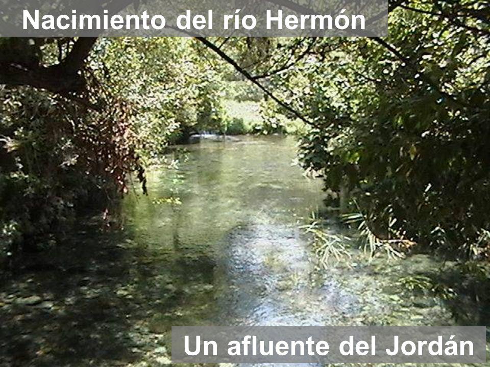 Nacimiento del río Hermón