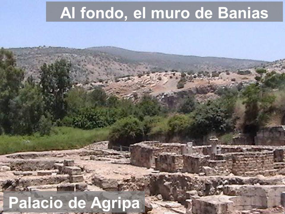 Al fondo, el muro de Banias
