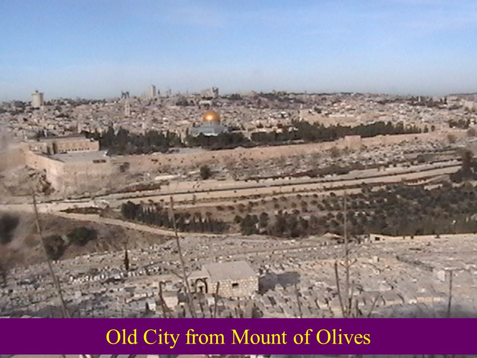 Old City from Mount of Olives