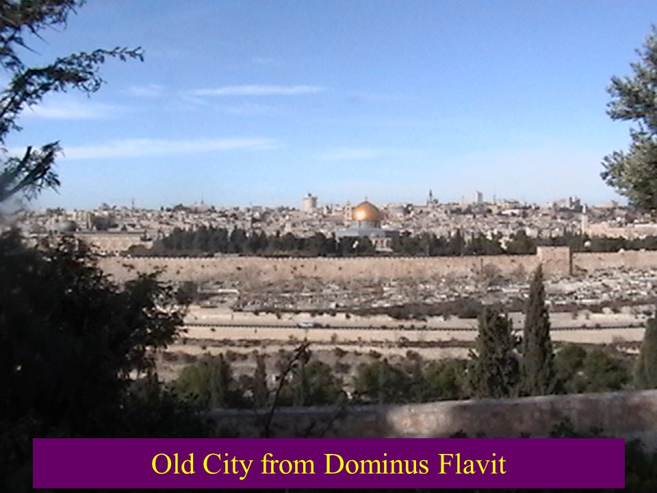 Old City from Dominus Flavit