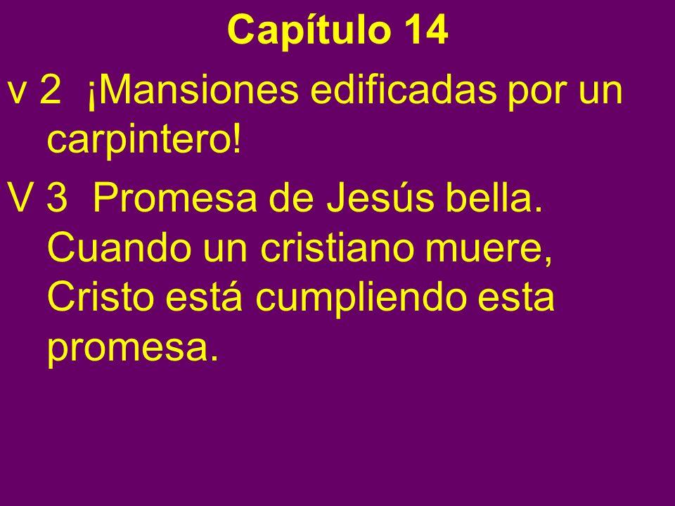 Capítulo 14 v 2 ¡Mansiones edificadas por un carpintero!