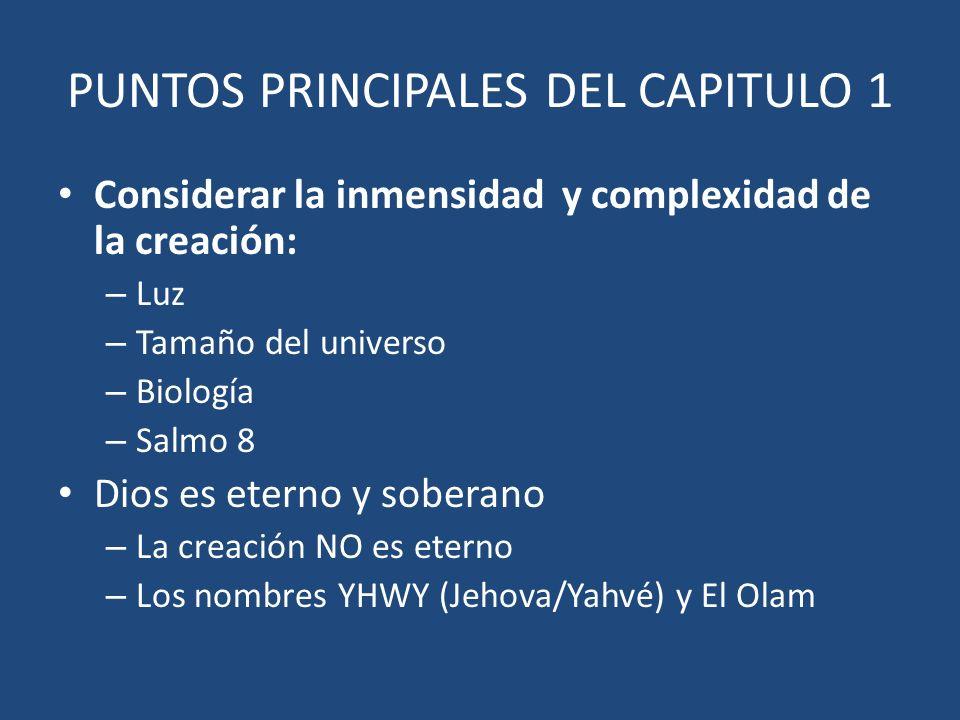 PUNTOS PRINCIPALES DEL CAPITULO 1