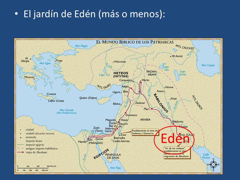 El jardín de Edén (más o menos):