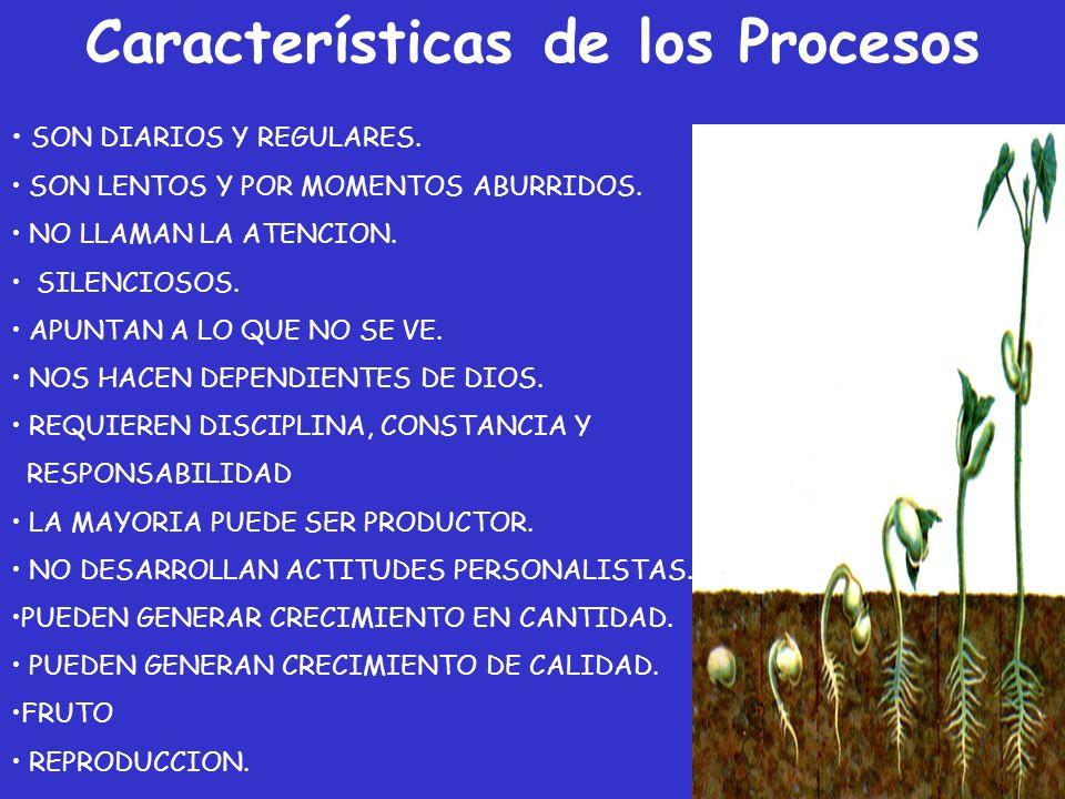 Características de los Procesos