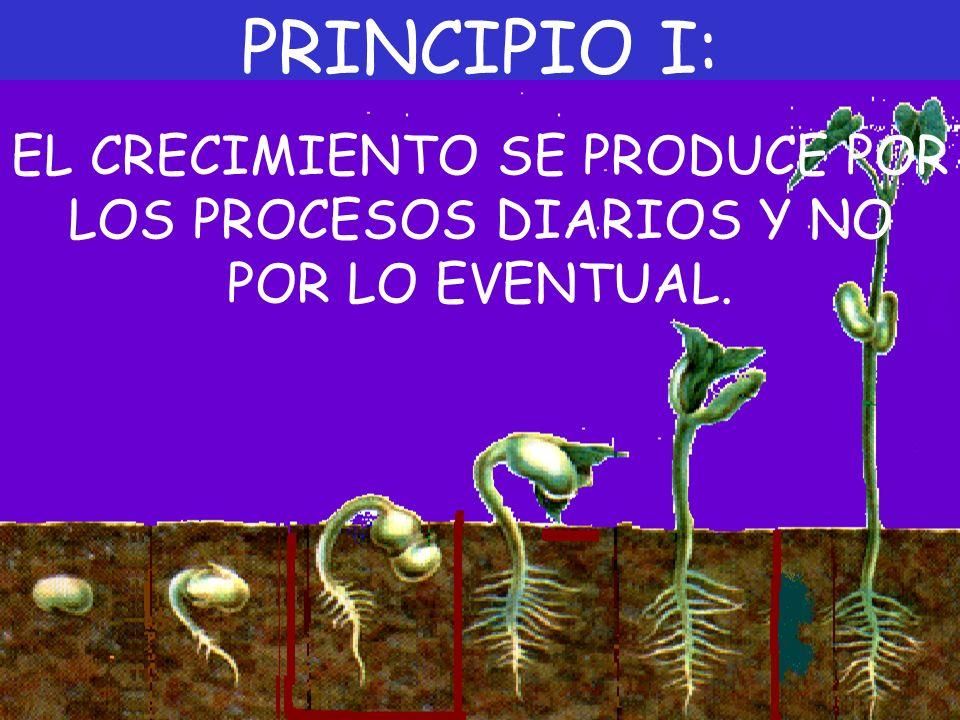 PRINCIPIO I: EL CRECIMIENTO SE PRODUCE POR LOS PROCESOS DIARIOS Y NO POR LO EVENTUAL.
