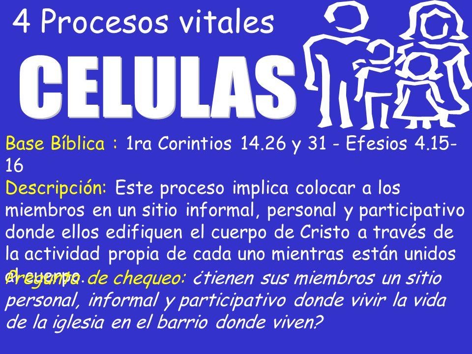 4 Procesos vitales CELULAS