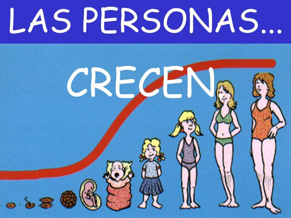 LAS PERSONAS... CRECEN.