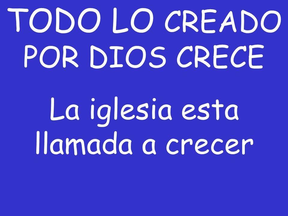 TODO LO CREADO POR DIOS CRECE
