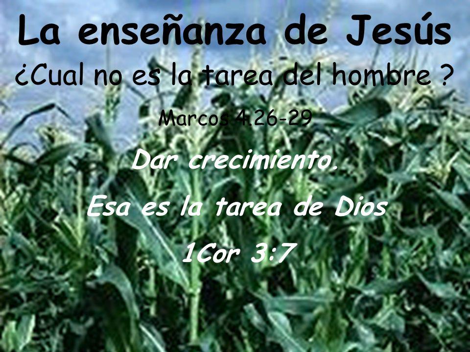 ¿Cual no es la tarea del hombre Marcos 4.26-29