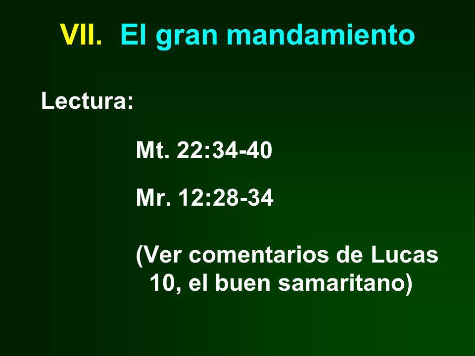 VII. El gran mandamiento