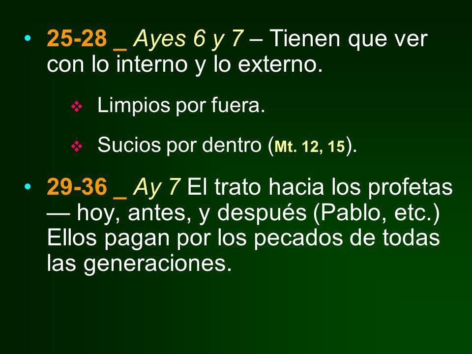 25-28 _ Ayes 6 y 7 – Tienen que ver con lo interno y lo externo.