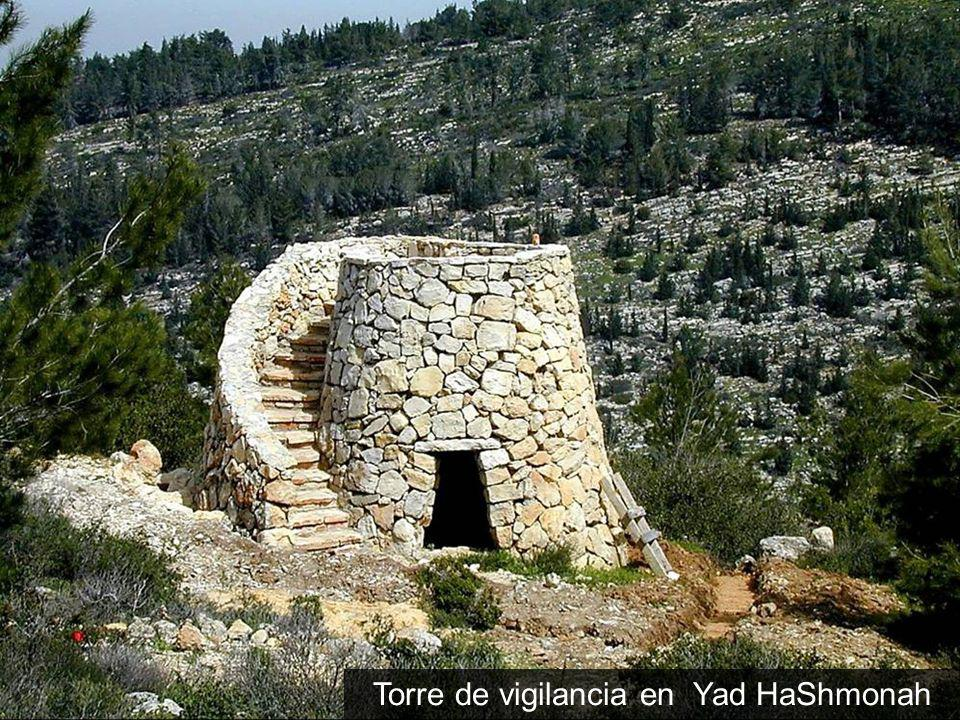 Torre de vigilancia en Yad HaShmonah