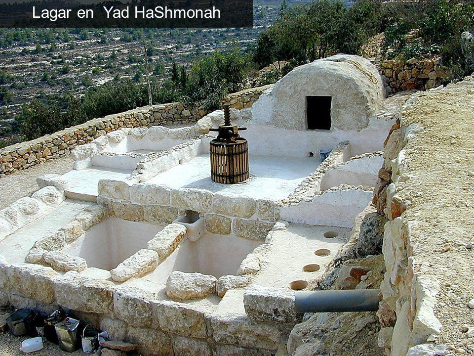 Lagar en Yad HaShmonah