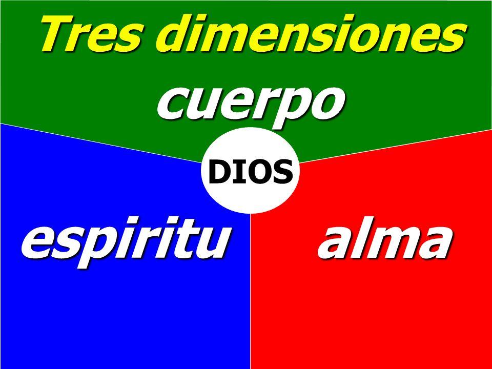 Tres dimensiones cuerpo DIOS espiritu alma